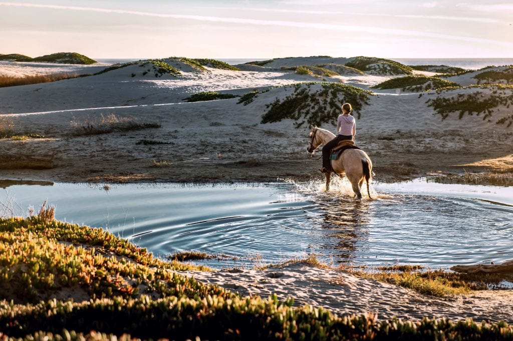 A guest experiencing horse riding at Perivoli Lagoon House